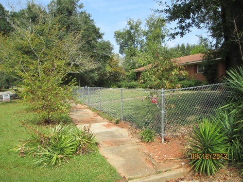 affordable chain link fence