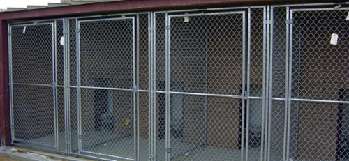 safe dog kennel