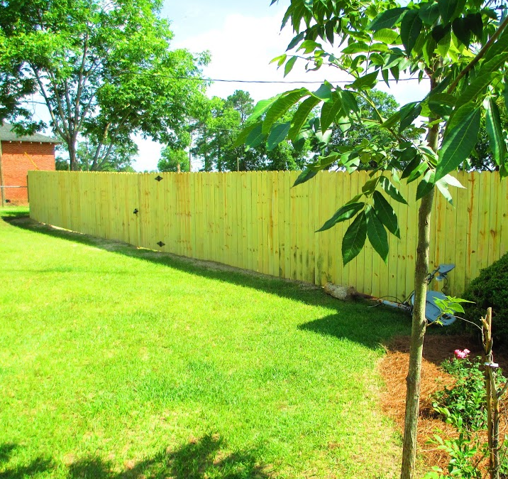 Wooden Fence in Backyard