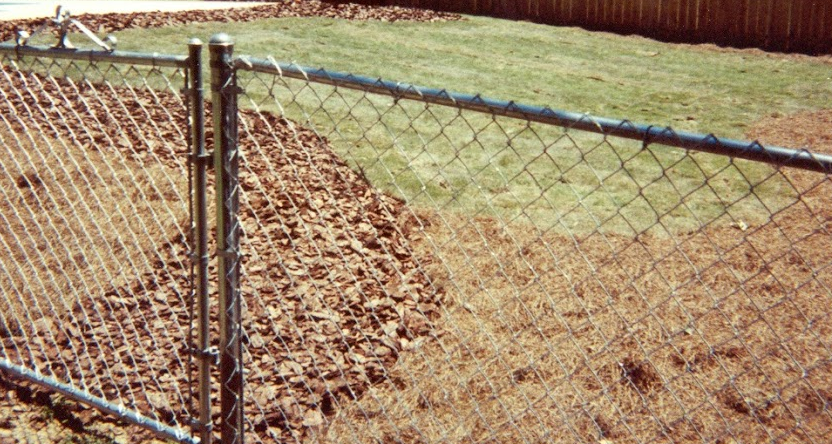 Chain Link Fence in a Backyard