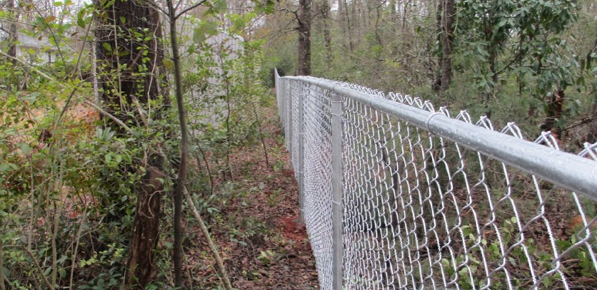 Chain Link Fence in a Forest Area