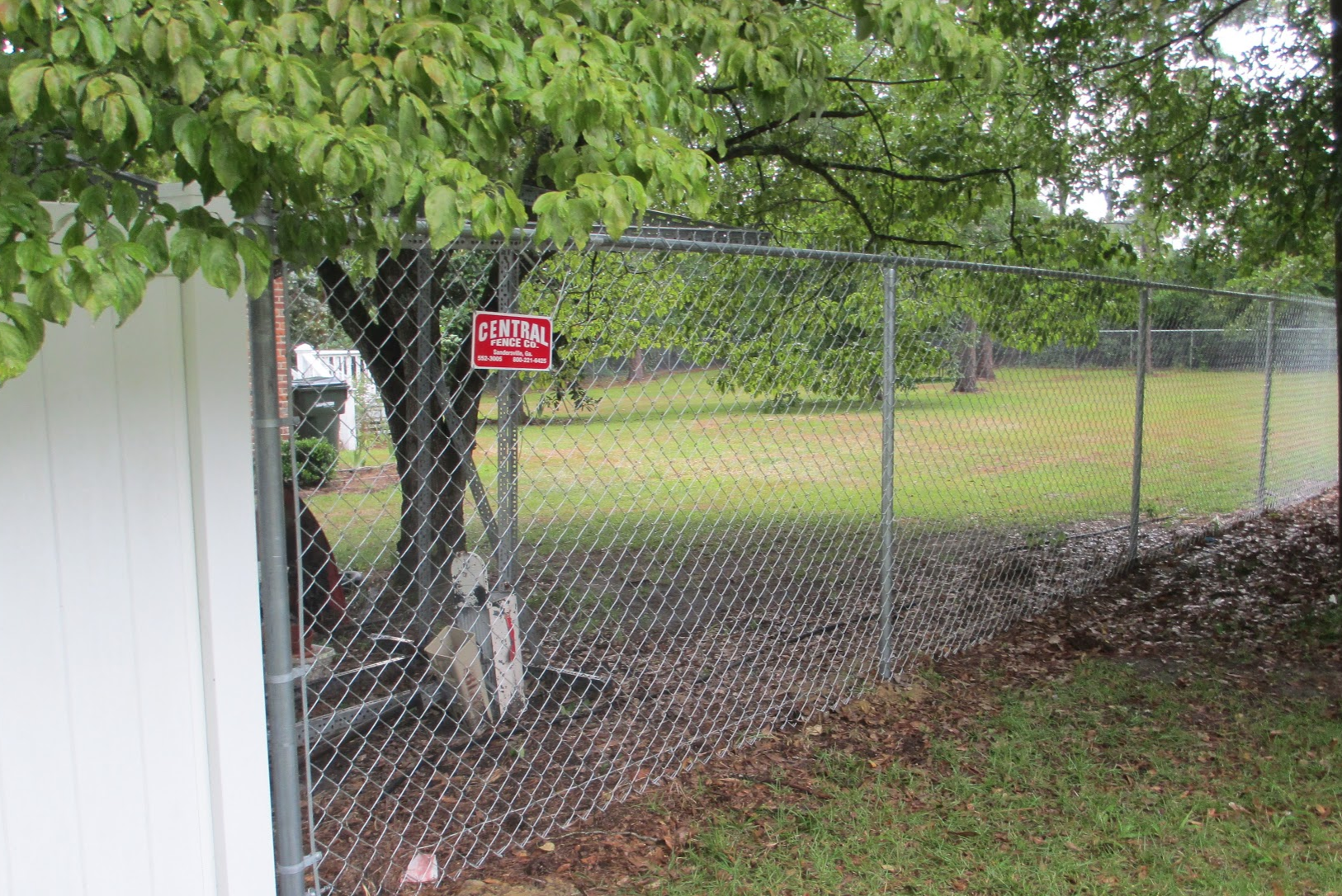 Chain Link Fence in Backyard