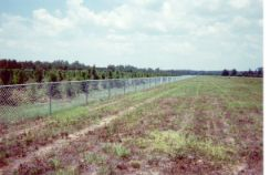 Chain_Link_Fence-53