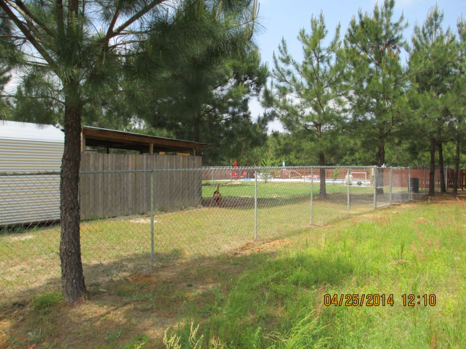 Chain_Link_Fence-58